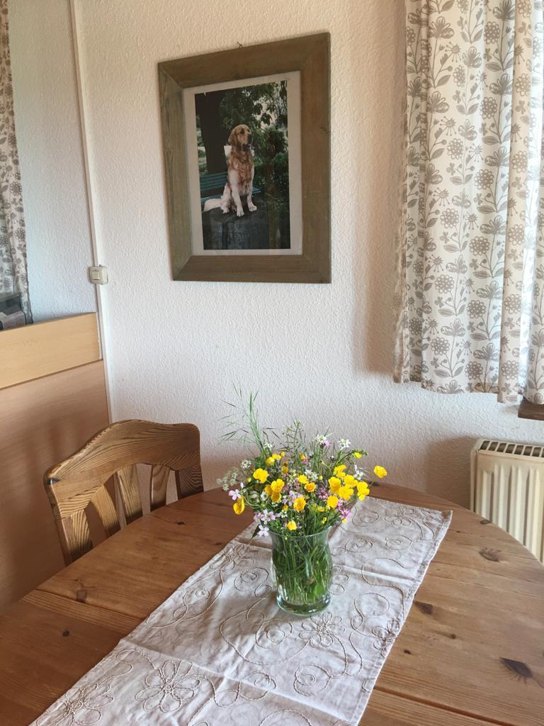 Bauernhof- und Landurlaub in Hessen Ferienhaus Gold Obere Ferienwohnung