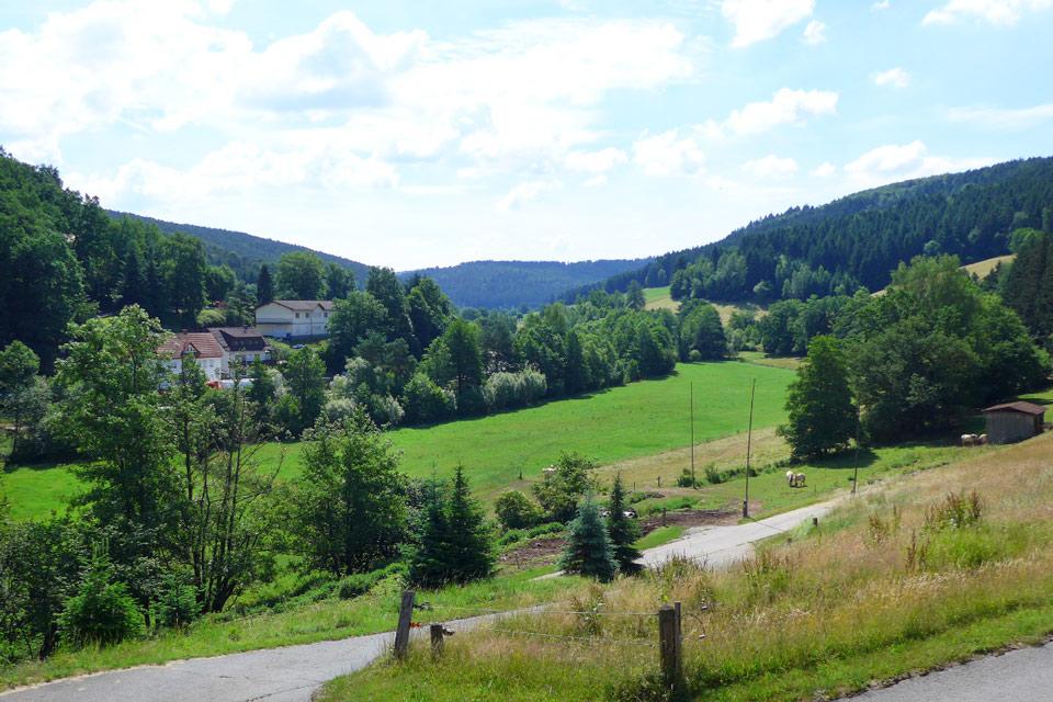 Bauernhof- und Landurlaub in Hessen - Waldhubenhof Ferienwohnung 11