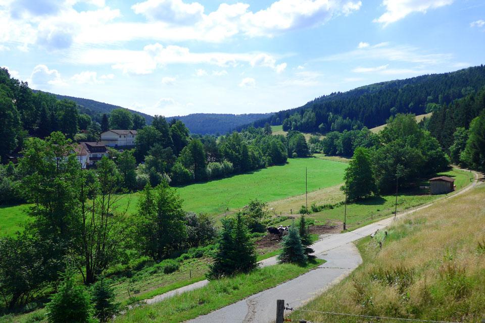 Bauernhof- und Landurlaub in Hessen - Waldhubenhof Ferienwohnung 12